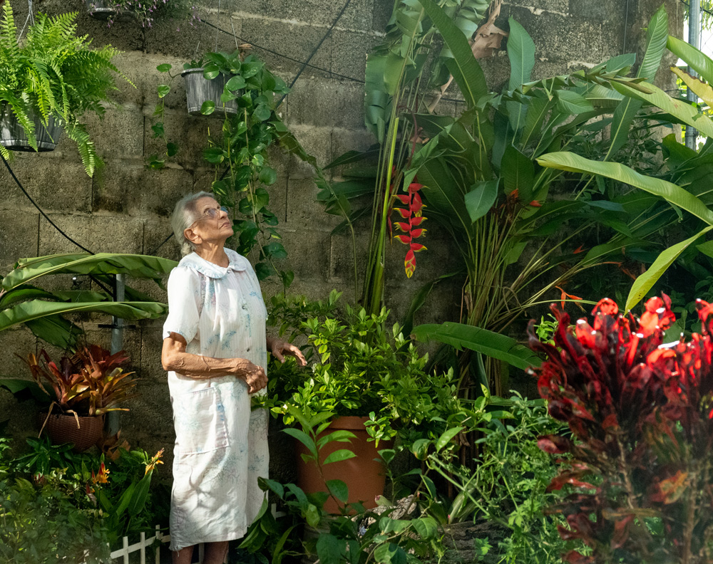 Elder woman standing in a garden of large plants