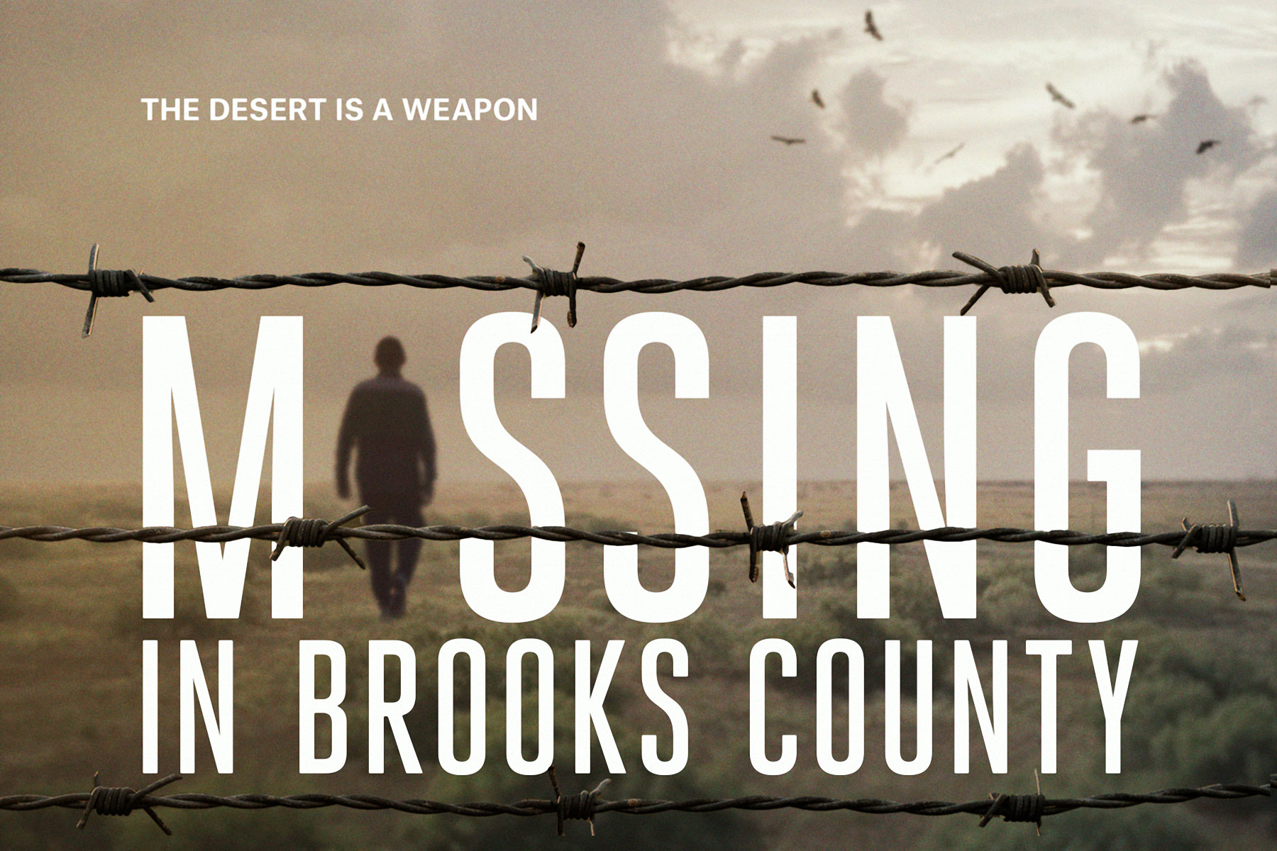 missinginbrookscounty-poster_horizontal